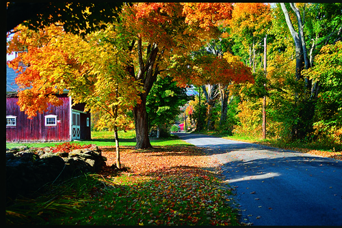 Fall Foliage in Litchfield Hills CT  copy 2