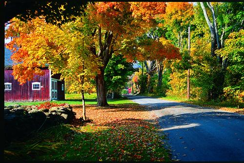 Fall Foliage in Litchfield Hills CT  copy 2