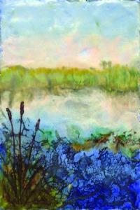 L. Petrocine - Wetlands