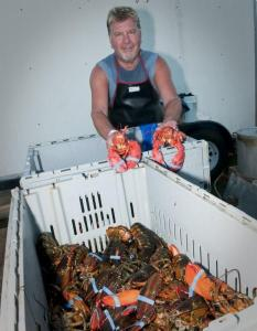 Lobsterman-466x600