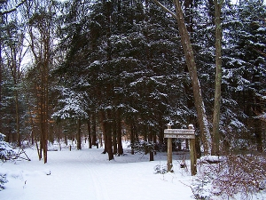 Center_at_Fairfield_and_Larsen_Wildlife_Sanctuary_under_snow_cover_Feb_2009_by_John_Laiacone_(7)
