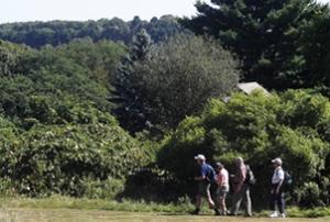 greenwich audubon hike