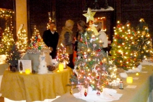 Gunn_Festival_of_Trees_photo_2014_PR