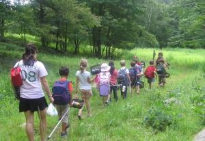 group_hike_through_bm_field