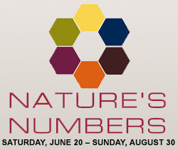natures-numbers-home