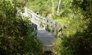 SW bridge