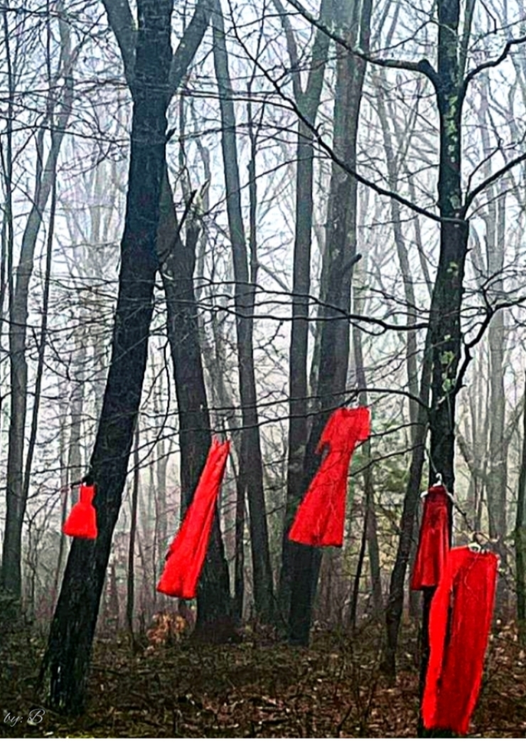 red dress project Institute for American Indian Studies